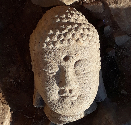 The head of a Buddha statue found in Gyeongju, North Gyeongsang. The statue dates back to the Unified Silla period (668-935). [CULTURAL HERITAGE ADMINISTRATION]